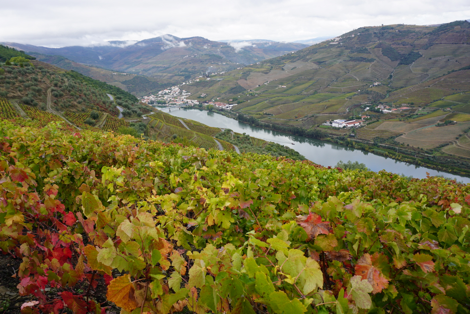 Highlights of 2016: The Douro valley